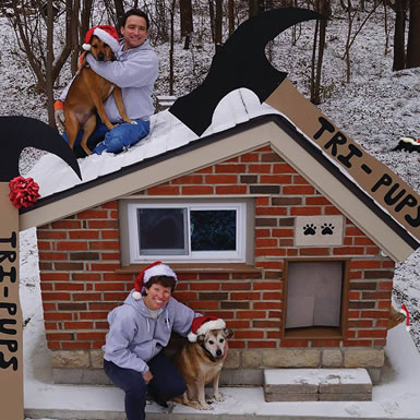 dog house members image